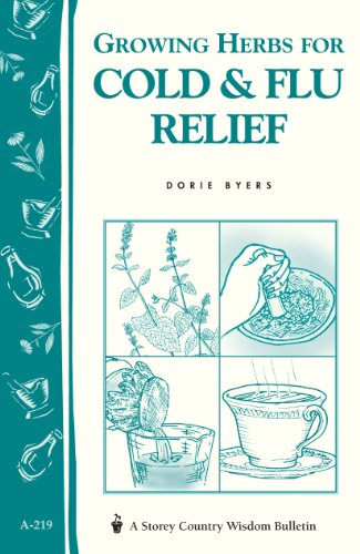 Growing Herbs for Cold & Flu Relief: