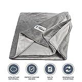 PetFusion Premium Medium Dog Blanket (112x86 CM). Reversible Gray Micro Plush. [100% soft polyester]