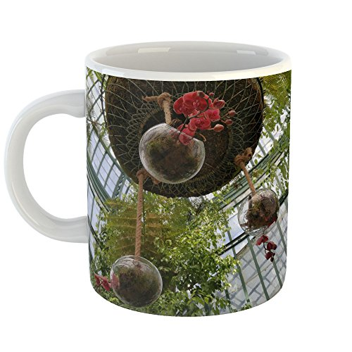 Westlake Art - Tree Bird - 11oz Coffee Cup Mug - Modern Picture Photography Artwork Home Office Birthday Gift - 11 Ounce (AB80-FAECD)