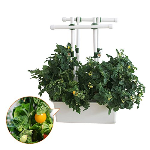Indoor-Hydroponics-Grower-Kit-Pathonor-11-Pod-35-gal-Non-transparent-DIY-Educational-DWC-Self-Watering-Hydroponics-Tools-Plant-Cloner-Kit-Include-Aquarium-Air-Pump-Buoy-Planting-Baskets-etc