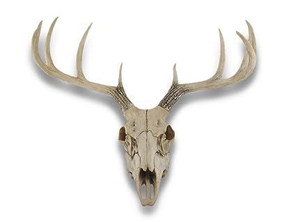 10 Point Buck Deer Skull Bust Wall Hanging