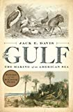 img - for The Gulf: The Making of An American Sea book / textbook / text book