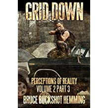 Grid Down Perceptions of Reality: Volume 2 Part 3 (Grid Down Perception of Reality)