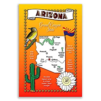 Amazoncom ARIZONA STATE MAP Postcard Set Of Identical - Arizona map