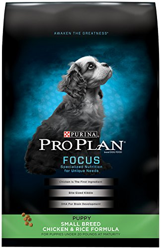 Purina Pro Plan FOCUS Puppy Small Breed Chicken & Rice Formula Dry Dog Food - (1) 18 lb. Bag - Plan Puppy Food