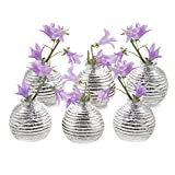 Chive - Smasak Small Sphere Round Glass Flower Vase, Decorative Rustic Vase for Home Decor Living Room Centerpieces Parties - Wholesale Bulk 6 Pack - Silver