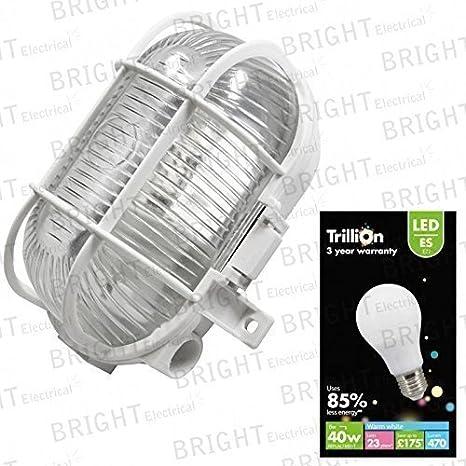 IP44 Blanco LED Exterior Jardín Seguridad MAMPARA Aplique de pared Farol + Gls bulbo: Amazon.es: Iluminación
