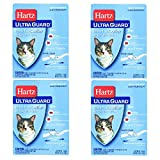 Hartz Mountain 80483 Ultraguard Flea and Tick Collar for Cats and Kittens, Pack of 4