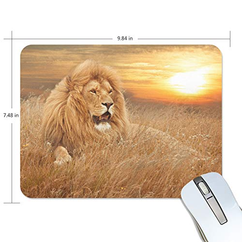 Lion Sunset Mouse Pad Gaming Computers Mousepad Mousemat Mat Small Custom PC -