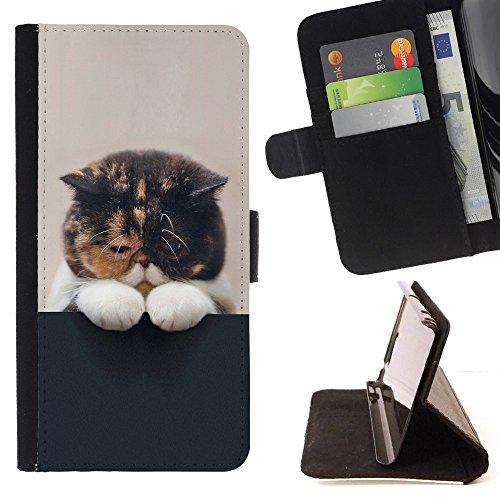 STPlus Gato en una caja Animal Monedero Carcasa Funda para HTC One M9+ (M9 Plus) #2