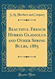 Amazon / Forgotten Books: Beautiful French Hybrid Gladiolus and Other Spring Bulbs, 1885 Classic Reprint (J M Thorburn and Company)