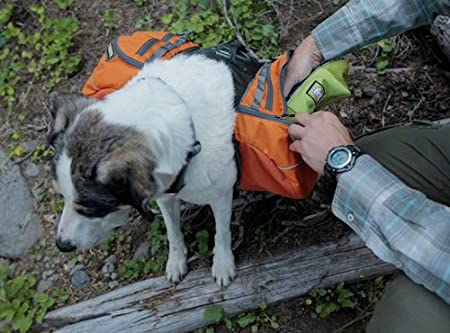 Ruffwear Approach Pack Extra Small - Perro de día Senderismo ...
