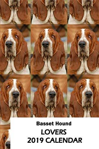 Basset Hound Lovers 2019 Calendar
