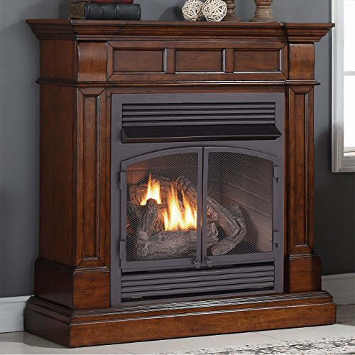 Duluth Forge Dual Fuel Vent Free Gas Fireplace - 32,000 BTU, Remote Control, Auburn Cherry Finish (Gas Heater For Fireplace compare prices)