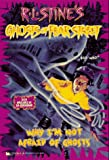 Why I'm Not Afraid of Ghosts, R. L. Stine, 0671008528