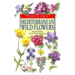 Meditteranean Wildflowers (Collins Field Guide)