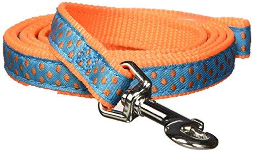 East Side Collection Nylon Polka Dot Dog Leash, 4-Feet x 5/8-Inch Lead, (East Side Collection Polka Dot)