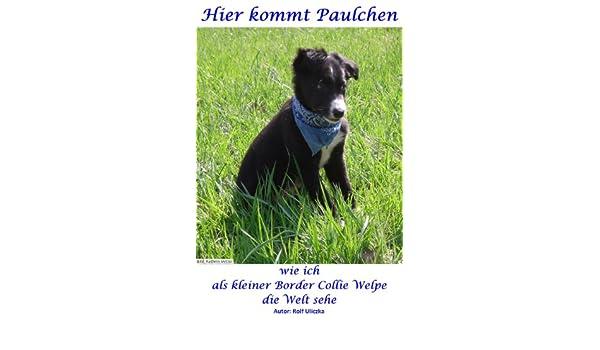 Hier kommt Paulchen - wie ich als kleiner Border Collie Welpe die Welt sehe (German Edition)