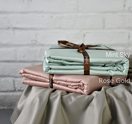 Solid Color Egyptian Cotton Duvet Cover Luxury Bedding Set High Thread Count Long Staple Sateen Weave Silky Soft Breathable Pima Quality Bed Linen (Queen, Mint Sky)
