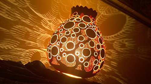 2017 'The DNA' Handmade Gourd Lampshade Decorative Light Interesting Unusual Unique Gift Idea