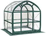 Flower House FHSP300CL SpringHouse Greenhouse, Clear