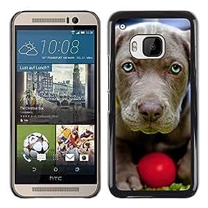 Be Good Phone Accessory // Dura Cáscara cubierta Protectora Caso Carcasa Funda de Protección para HTC One M9 // Chesapeake Bay Retriever Weimaraner