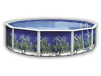 TOI - Piscina OCÉANO CIRCULAR 550x120 cm Filtro 3,6 m³/h.: Amazon.es: Juguetes y juegos