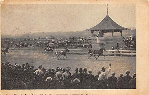 Horse 1908 (Syracuse, NY, USA Race Track, New York State Fair Grounds Horse Racing Postcard 1908)