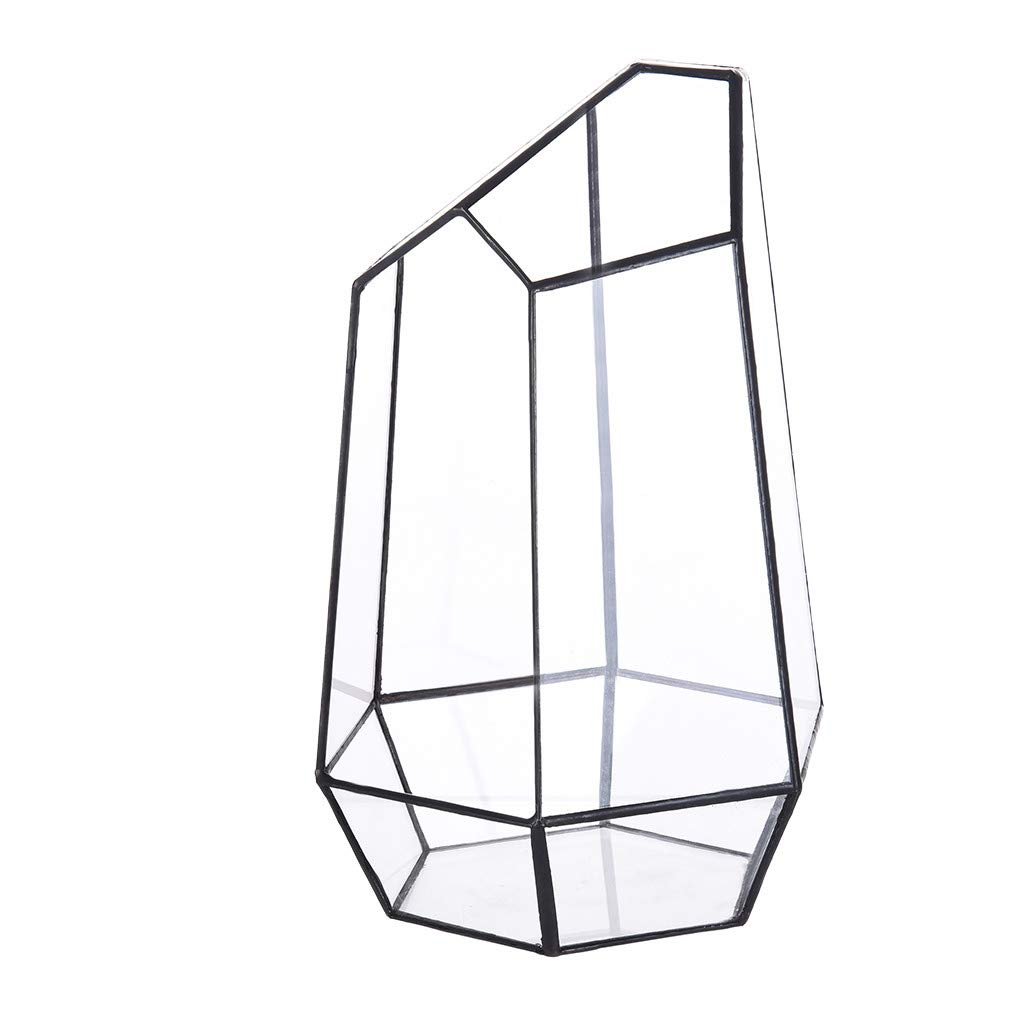 Irregular Glass Terrarium With Door Succulent Planter Geometric Flower Plant Pot Tabletop Small Bonsai Reptile Container Desktop Display Box Candle Holder Gift by Miklan