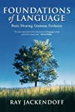Foundations of Language: Brain, Meaning, Grammar, Evolution