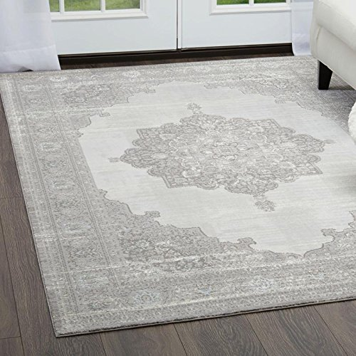 Brooksville Area Rug by Christian Siriano and Home Dynamix | Plush Polyester Indoor Rug | Modern Style, Designer Fashion | Plush, Soft, Comfy (5' x 7', Ivory- Gray) by Home Dynamix