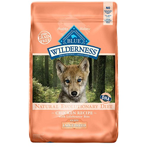 Blue-Buffalo-Wilderness-High-Protein-Dry-Puppy-Food