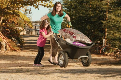 081483003726 - Lifetime 65034 Two Wheel Wheelbarrow, 6.5 Cubic Feet Capacity carousel main 3