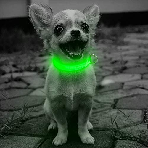 Domi Collar Rechargeable Adjustable Reflective