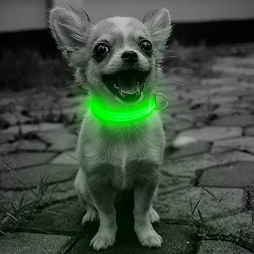 (Domi Led Dog Collar, USB Rechargeable Adjustable Lighted Collar for Small Dogs and Cats, Reflective Dog Collar Glow in Dark Keep Your Pet Visible and Safe(XS, Green))