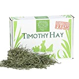 Small Pet Select 12-Pound 2nd Cutting Timothy Hay