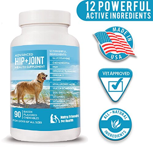 Joint Supplement for Dogs - Advanced Hip and Joint Support - Glucosamine, MSM, Chondroitin, Organic Turmeric, Omega 3, CoQ10 - Arthritis and Hip Dysplasia Pain Relief - 90 Chews - Made in USA