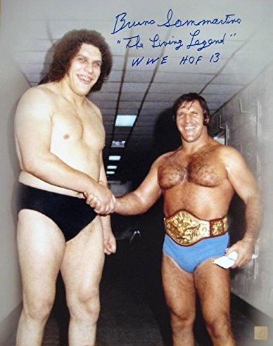 Bruno Sammartino Signed 16x20 Photo w/ Andre The Giant