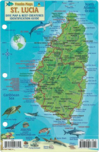 St. Lucia Dive Map & Reef Creatures Guide Franko Maps Laminated Fish Card