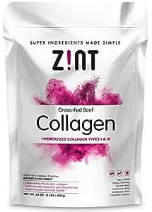 Zint Beef Collagen Powder (32 oz): Grass-Fed Hydrolyzed type 1 & 3 Protein Supplement