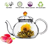 Glass Teapot No Drip Special Lead Free Glass (20 oz Amber Juliet)
