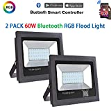Hypergiant 2 Pack 60W Bluetooth Led RGB Flood Lights, Outdoor Color Changing Floodlight with Remote APP Control, IP66 Waterproof Multi Colors Multi Modes Dimmable Wall Washer Light, Stage Lighting