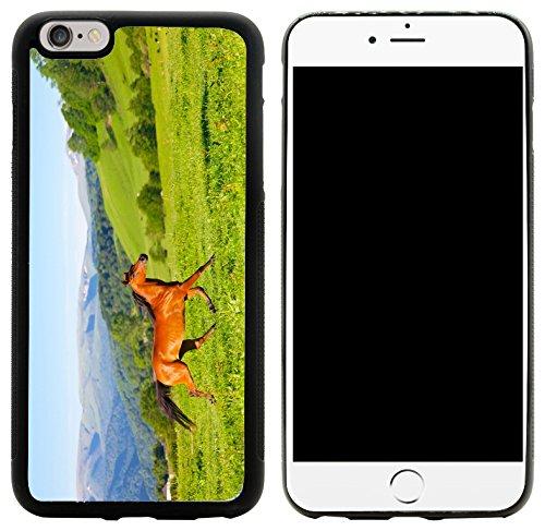 Rikki Knight Arab Racer Horse on Green Meadow Design iPhone 6/6s Plus Hybrid Case Cover, Black]()