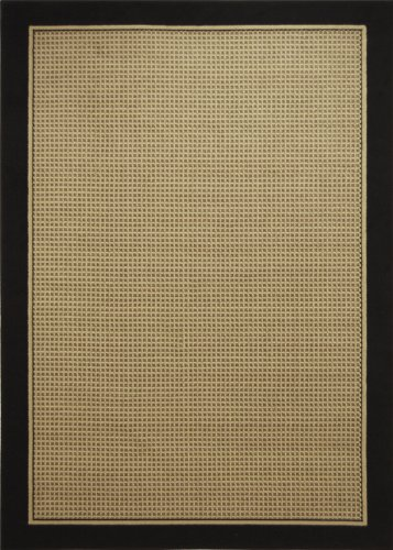 Modern Area Rug by Home Dynamix, 4469-450, Black | Catalina Collection | Soft Texture, Excellent Durability, Easy to Clean | Fade and Stain Resistant | Indoor Use for the Living Room, Bedroom, Dining Room, Work and More!