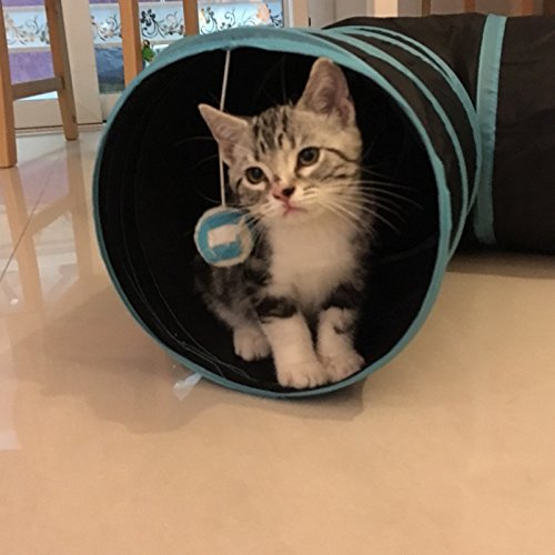 Aolan Cat Tunnel 3 Way Tunnels Extensible Collapsible Cat Play Tunnel Toy Maze Cat House with Pompon and Bells for Cat Puppy Kitten Rabbit with Cat Fish Catnip Toy by pawluv (Image #5)