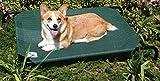 Coolaroo Steel-Framed Pet Bed, Cadet Blue, Medium