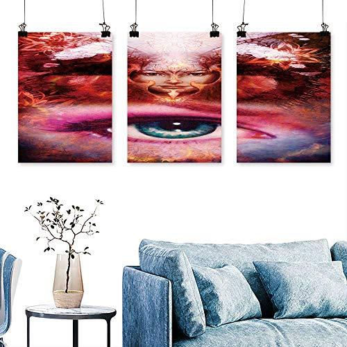 SCOCICI1588 3pcs Triptych Paint Goddess wo bir Phoenix on Your face Print On Canvas No Frame 16 INCH X 40 INCH X 3PCS ()