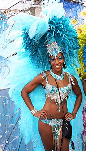 Home Comforts Canvas Print Carnival Costume Notting Hill Festival Headgear Vivid Imagery Stretched Canvas 10 x 14