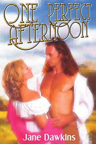 book cover of One Perfect Afternoon