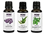 3-Pack Variety of NOW Essential Oils: Pure & Natural Blend - Lavender